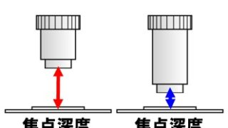 【生物基礎】顕微鏡のポイント!染色液やプレパラートの作成方法