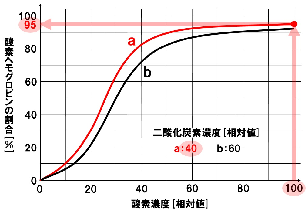 酸素解離曲線 肺胞