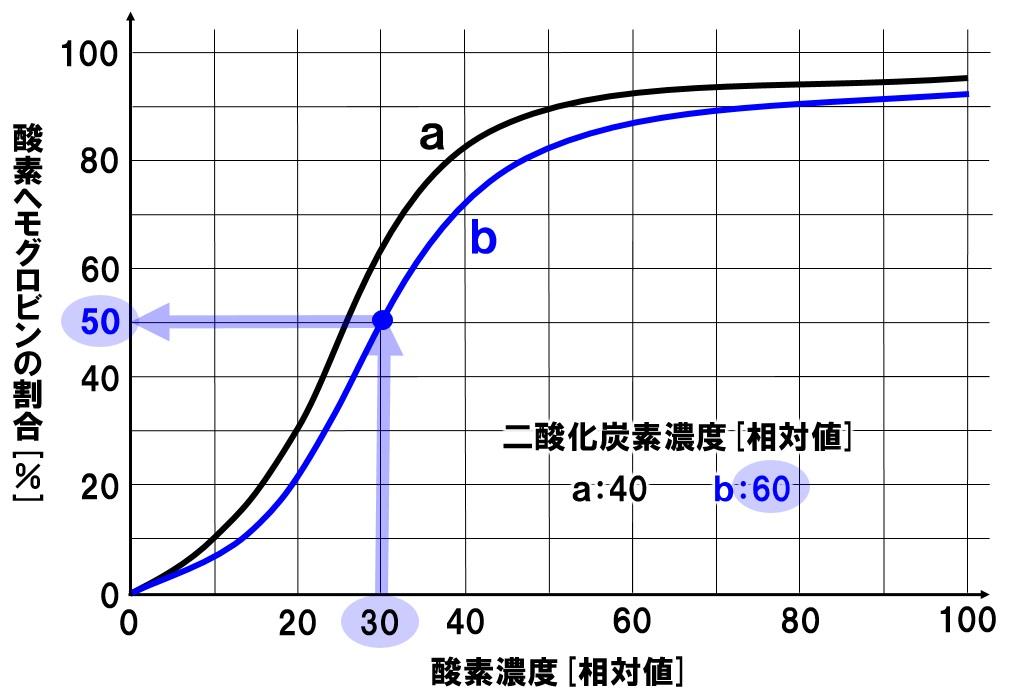 酸素解離曲線 組織