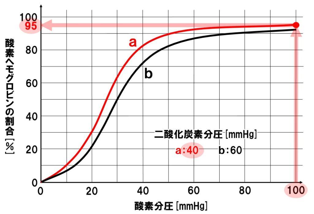 酸素解離曲線 肺