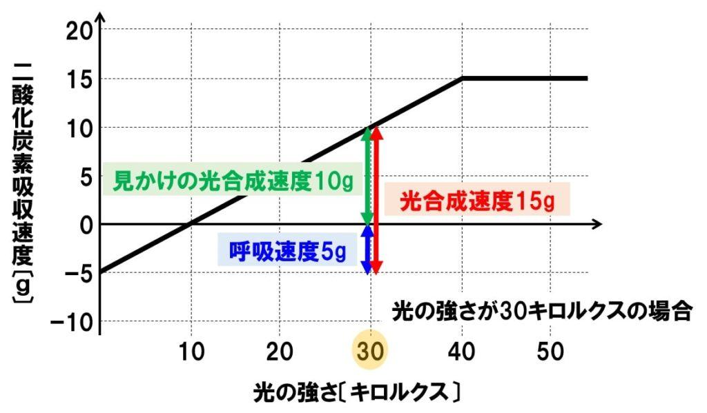 光合成速度 真の光合成速度
