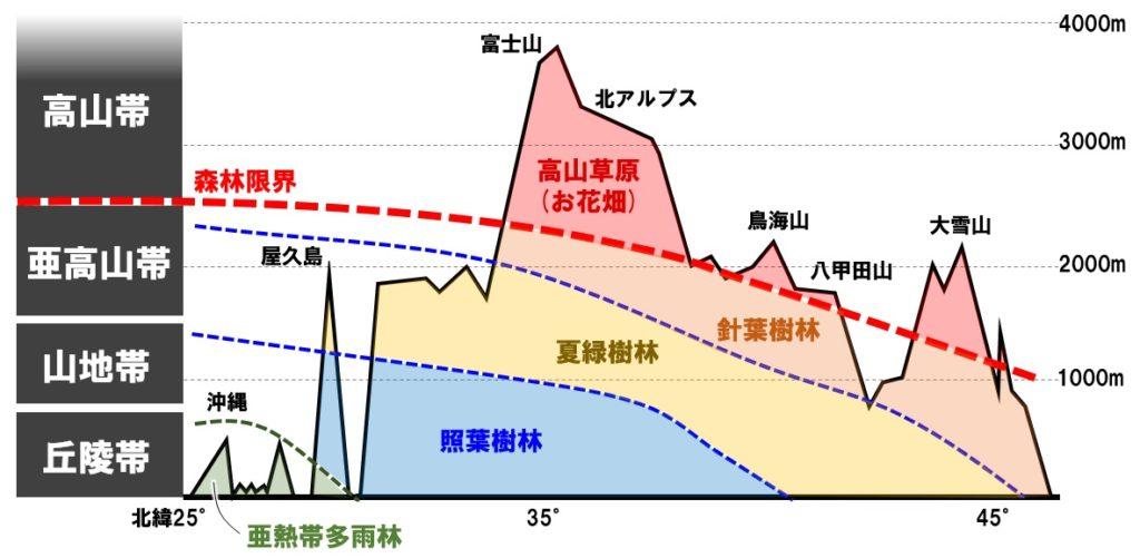 日本のバイオームの垂直分布
